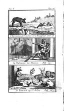 Página 124